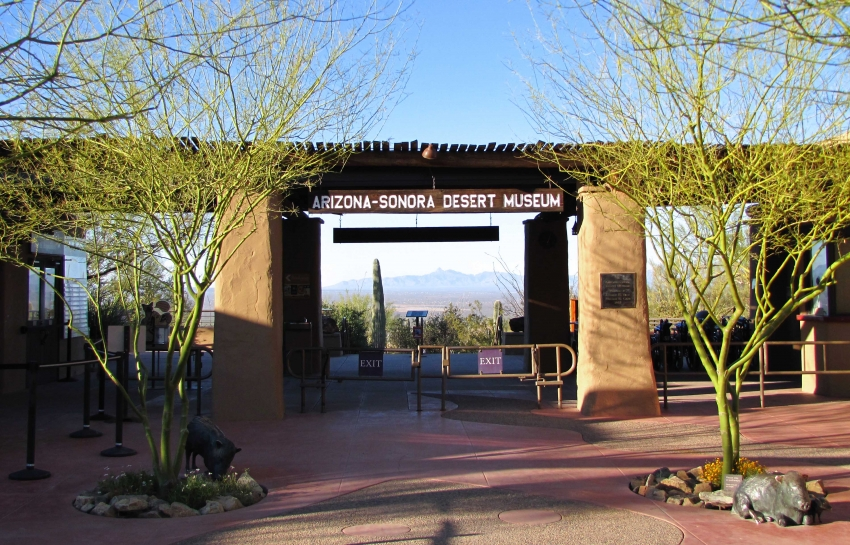 Hosted by the Arizona Opera - Tucson League